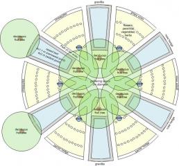 mandala-garden_design